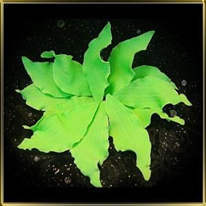 листик 75мм с пушистыми краями зеленый 12шт. мастика сах.