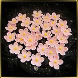 цветок Яблочный цвет 20мм розовый с желтой серединкой 25шт. мастика сах.