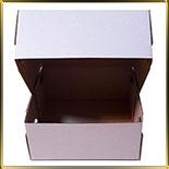 коробка (упаковка) д/торта квадр. 230*230*100мм белая