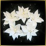 цветок 5 лепестков двойной 50мм белый с пестиком 6шт. мастика сах.