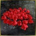 цветок Гвоздика 20мм красная 30шт. мастика сах.