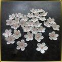 цветок Яблочный цвет 20мм белый с розовой серединкой 25шт. мастика сах.