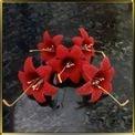 цветок Лилия  70мм красная 5шт. мастика сах.