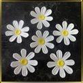 цветок Ромашка 60мм белая с округл. лепестками 5шт. мастика сах.