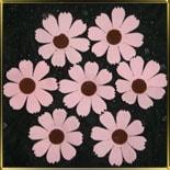 цветок Космея (ромашка) 40мм розовая 10шт. мастика сах.