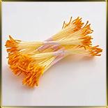 пестики-тычинки удлинен.  оранжевые