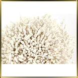 пестики-тычинки с блестками 5мм белые