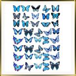 декор   Бабочки сине-голубые